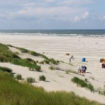 Die Menschen werden Bremerhaven besuchen