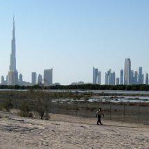 Den guten Genuss in der Reise Vereinigte Arabische Emirate finden