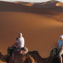 Architektur und Kultur in Marrakesch erkunden
