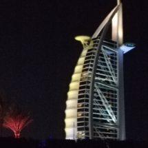 Dubais besichtigen
